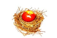 Apple on the nest Royalty Free Stock Photos