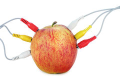 Apple  in network Royalty Free Stock Images