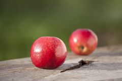 Apple no outono na tabela com cesta detalha fotografia de stock royalty free