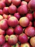 Apple no ` s do fazendeiro introduz no mercado Foto de Stock