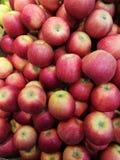 Apple no ` s do fazendeiro introduz no mercado Fotos de Stock Royalty Free