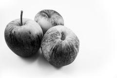 Apple noir mis sur un fond blanc image libre de droits