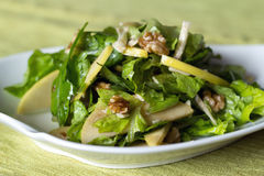Apple and nut salad. Apple and nut summer healthy salad royalty free stock photo