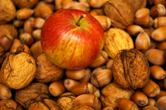 Apple and nuts Stock Image