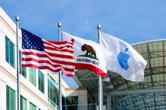 Apple oändlig ögla, Cupertino, Kalifornien, USA - Januari 30, 2017: Apple flagga framme av de Apple högkvarteren Arkivbilder