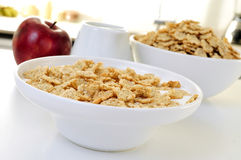 Apple and oatmeal cereals Stock Images