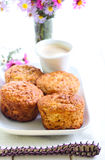 Apple oatmeal muffins Royalty Free Stock Photo