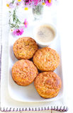 Apple oatmeal muffins Stock Images