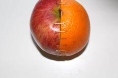 Apple och apelsin Fotografering för Bildbyråer