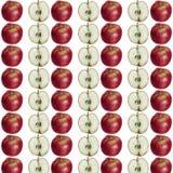 Apple och halvamodell stock illustrationer