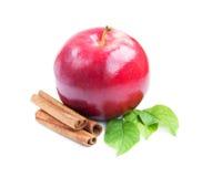 Apple och kanel Royaltyfri Foto