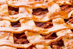 Apple och kanelbrunt syrligt mönstrar Royaltyfri Foto