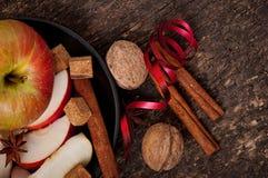 Apple och kryddor Royaltyfri Fotografi