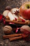 Apple och kryddor Arkivfoton