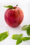 Apple och mintkaramell Arkivbilder