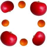 Apple och orange extas royaltyfri fotografi