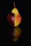 Apple OGM VII Στοκ εικόνες με δικαίωμα ελεύθερης χρήσης