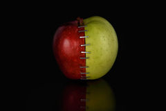 Apple OGM VIII Στοκ φωτογραφία με δικαίωμα ελεύθερης χρήσης