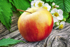 Apple on a old wooden board Stock Image