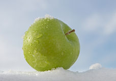 Apple On Snow Stock Photos