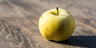 Apple. One natural rustic apple on wooden background Stock Photos