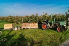Apple-oogst Hamburg royalty-vrije stock foto