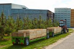 Apple-oogst in het land, Royalty-vrije Stock Afbeeldingen