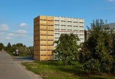 Apple-oogst in het land, Stock Afbeeldingen