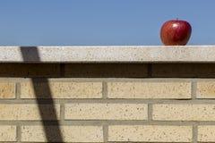 Apple op bakstenen muur Stock Fotografie