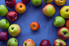 Apple op blauwe achtergrond Stock Foto