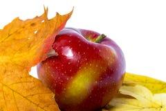 Apple op een witte achtergrond met gele bladeren Stock Afbeelding