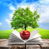 Apple and opened book. On the table Royalty Free Stock Photography