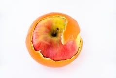 Apple in orange peel royalty free stock photography