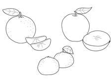 Apple orange and tangerine, BW Royalty Free Stock Photos