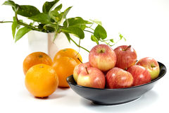 Apple and oranges stock images