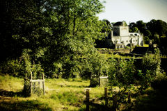 Apple orchards buckland abbey. Devon Royalty Free Stock Image