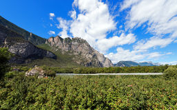 Apple Orchards in Sarca Valley - Trentino Italy Stock Images