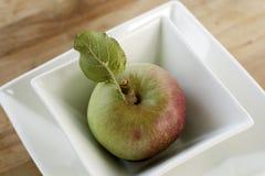 Apple orgánico de cosecha propia Fotos de archivo libres de regalías