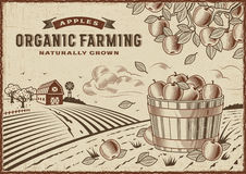 Apple Organic Farming Landscape vector illustration