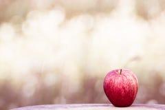 Apple på bokehträdgårdbakgrund Fotografering för Bildbyråer