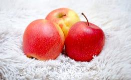 Apple på en grå bakgrund Fotografering för Bildbyråer