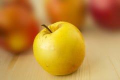 Apple på suddighetsbakgrund Arkivfoton