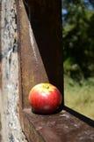 Apple på väggen Royaltyfri Foto