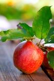 Apple på träbräde Arkivbilder