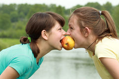 Apple para dois Fotografia de Stock