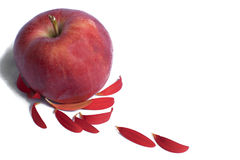 Apple parting of with its color and spreading the existence. By converting it to petals royalty free stock images