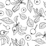 Apple repeating pattern royalty free illustration