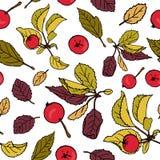 Apple repeating pattern stock illustration