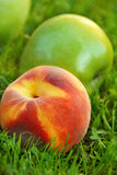 Apple and peach Stock Images