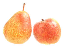 Apple and pear. Stock Photo